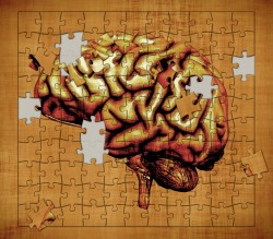 Seizures brain puzzle missing pieces
